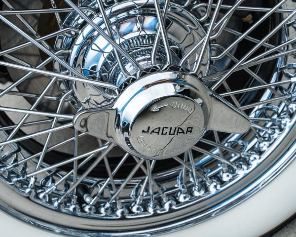 Jaguar Rims Photography Art | Happy Hogtor Photography
