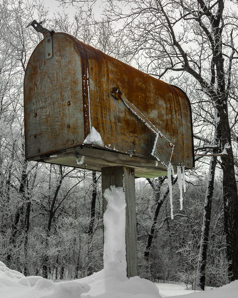 Got Mail? Photography Art | Happy Hogtor Photography