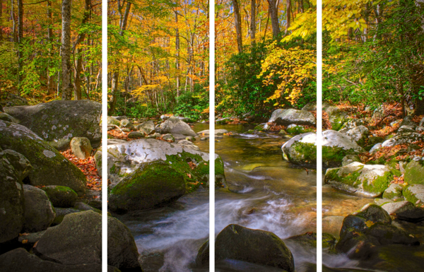 Tennessee Fall Art | dougbusby