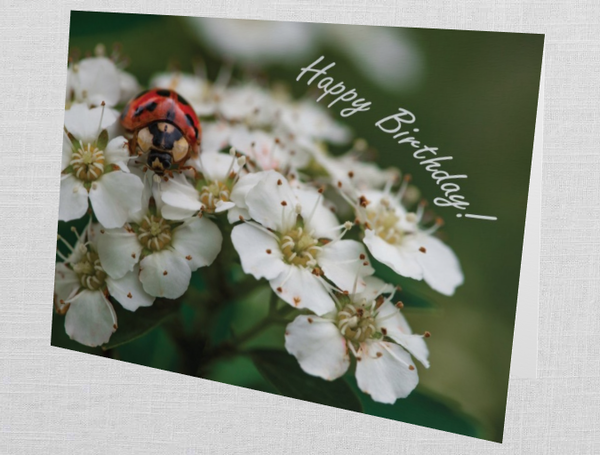 """Lady In The Flowers """"Happy Birthday!"""" Card (Set Of 10) 