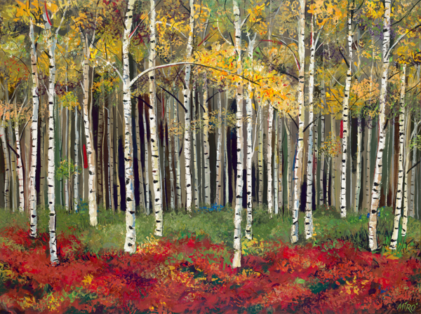 Aspen Forest/Art On Paper Art | KenarovART Inc