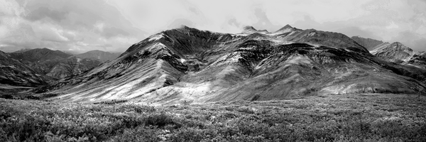 Tombstone Mountain Panorama Black And White Photography Art | Eric Hatch