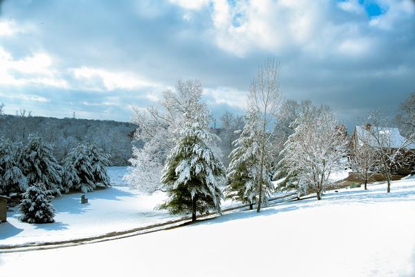 Snowy Hillside 3x2 Photography Art | Eric Hatch