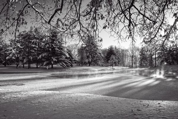 Farm Pond In Winter Bw Photography Art | Eric Hatch