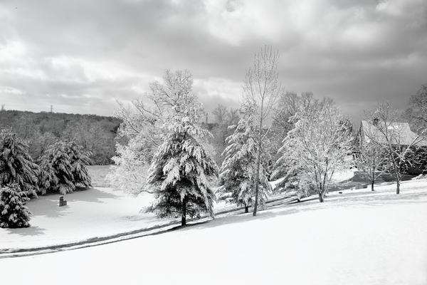 Snowy Hillside Bw 3x2 Photography Art | Eric Hatch