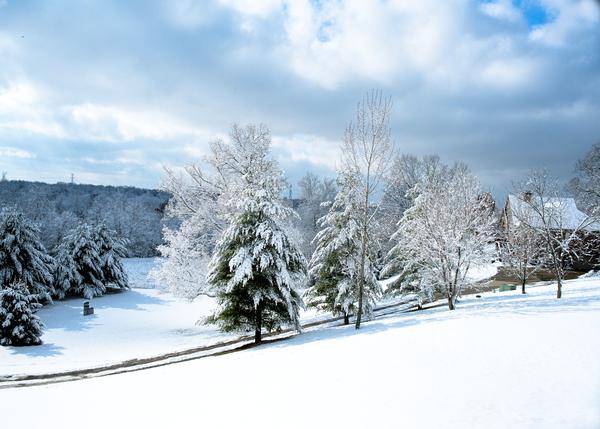 Snowy Hillside 75 Photography Art | Eric Hatch