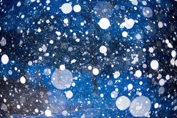 Snow Falling On Maple 2 Photography Art | Eric Hatch