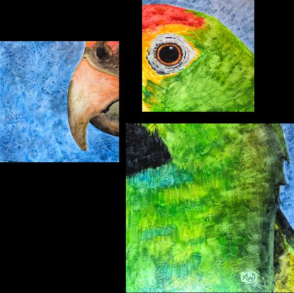 Red Browed Amazon Parrot Original Art | Water+Ink Studios