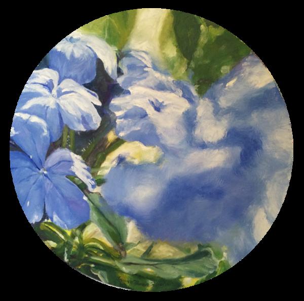 Plumbago Blue Art | Shed Art