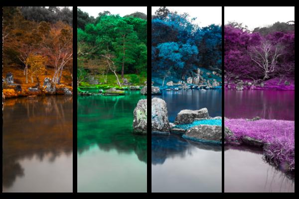 Zen Seasons In Technicolor Photography Art   Matej Silecky