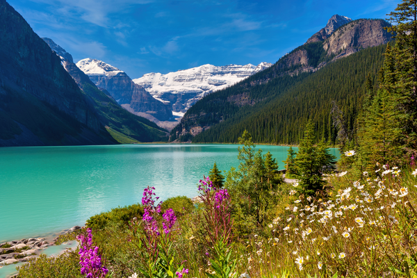 Art Print Lake Louise Banff National Park Alberta Canada High Peaks and Glacial Lake