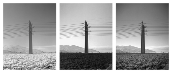 California Landscape Photography-Sculptural Towers in Open Farmland