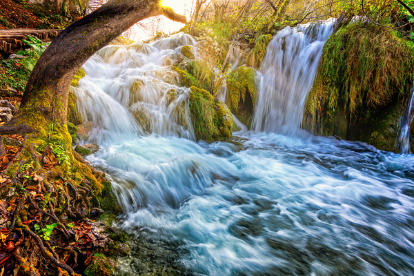 Art Print Plitvice Lakes National Park Croatia Natures Flow
