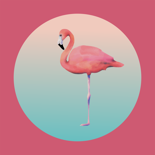 Pink Flamingo #1 Art | Davida Fernandez Studio