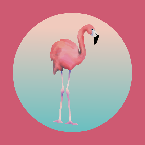 Pink Flamingo #2 Art | Davida Fernandez Studio