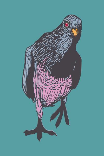 Curious Red Eyed Pigeon Art | Davida Fernandez Studio