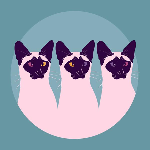 The Cross Eyed Cats Art | Davida Fernandez Studio