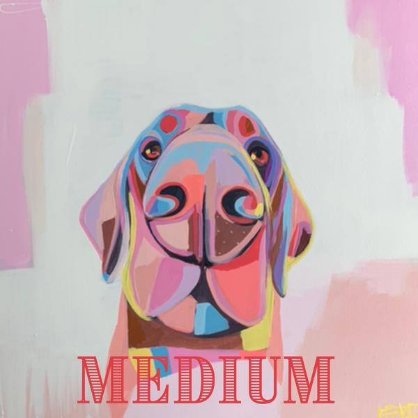 Rainbow Medium | Lesli DeVito