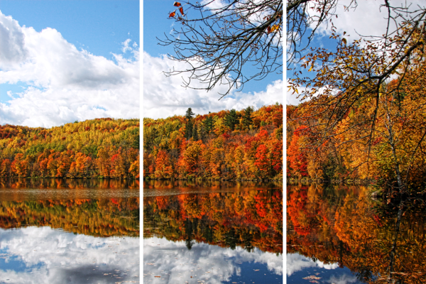 Fall Images From Minnesota   Acrylic Panel Art Photography Art | William Drew Photography