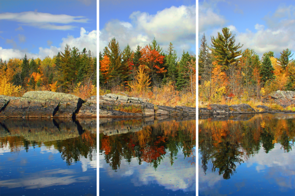 Fall Pictures   Acrylic Panel Art Photography Art | William Drew Photography