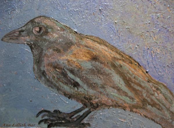 Crow 1 Png Deva Art | Lillith