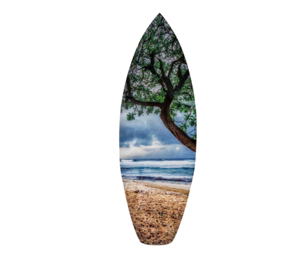 Ho'okipa Beach Park Art | Soaring Whales Photography LLC