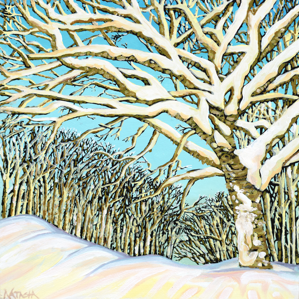 Golden Birch IV Art for Sale