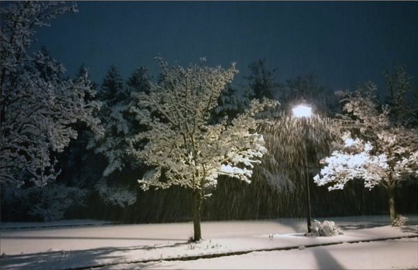 Snowy Street Light   Greeting Card | smalljoysstudio