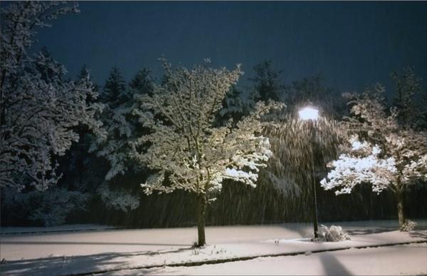 Snowy Street Light   Greeting Card | smalljoysstudio