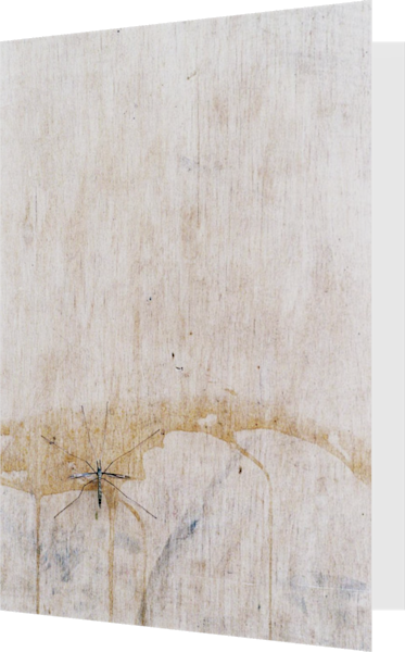 Bug Urban Zen Abstract Nature Greeting Card – Sherry Mills