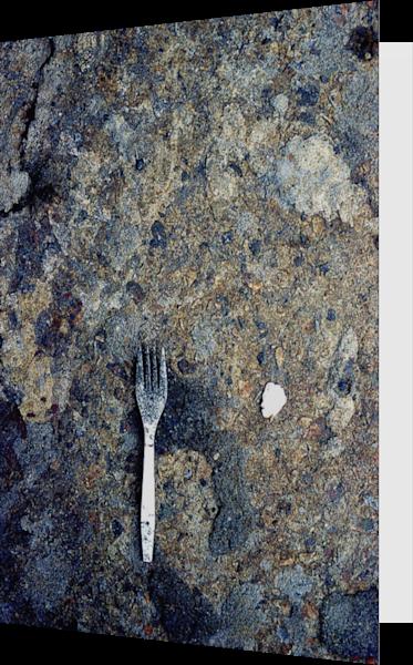 Abstract Fork NYC Sidewalk Art Greeting Card – Sherry Mills