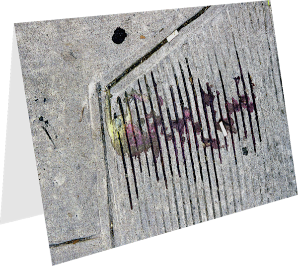 NYC Sidewalk Ice Cream Spill Greeting Card – Sherry Mills