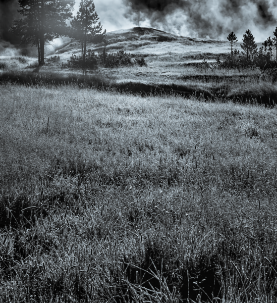 Crystal Morning In Yellowstone Photography Art | Robert Vielee Photography