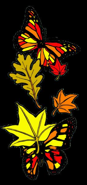 Fall Butterflies: Merch Art | Anonymous Art Studios