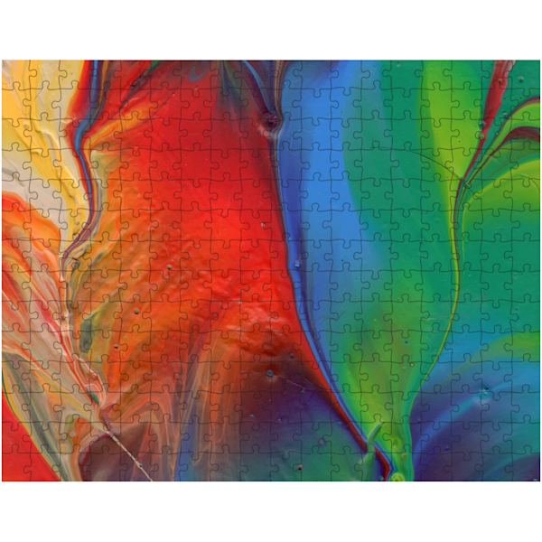 Parrot Feather Puzzle | KD Neeley, Artist