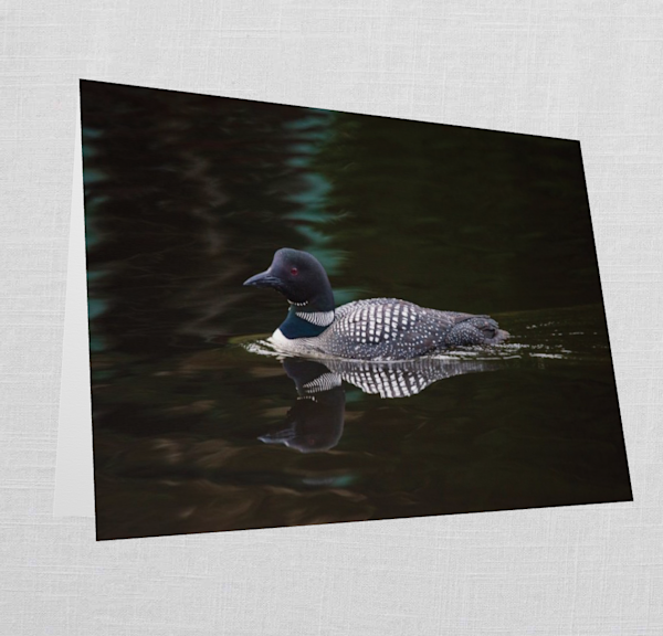 5x7 Folded Greeting Card Of The Loon | Kurt Gardner Photogarphy