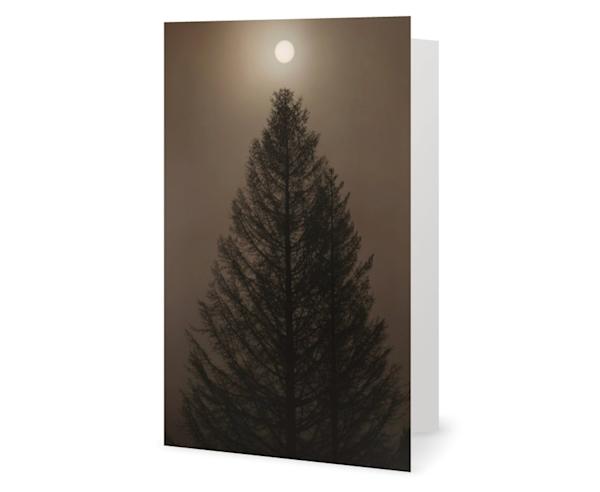 Silo Tree Card | Kurt Gardner Photogarphy Gallery