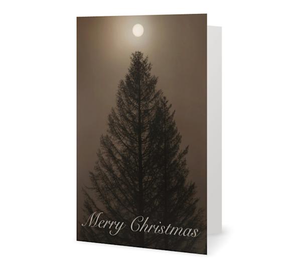 Silo Tree Merry Christmas Cards   Kurt Gardner Photogarphy Gallery