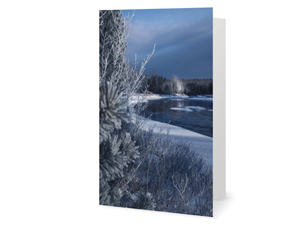 Vertical Moose River Winter Cards | Kurt Gardner Photogarphy Gallery