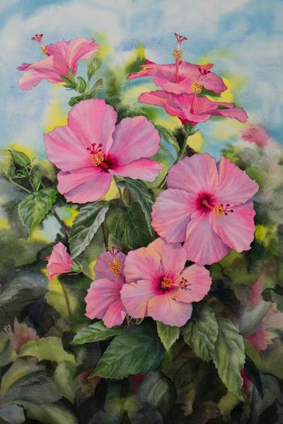 Hibiscus Art | victoriabishop.art