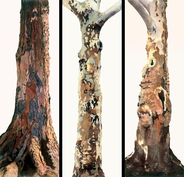 Trees Of Life (Multipanel) Art | Meryl Cohen Art
