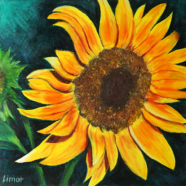 Sunflower Print Art   Limor Dekel Fine Art
