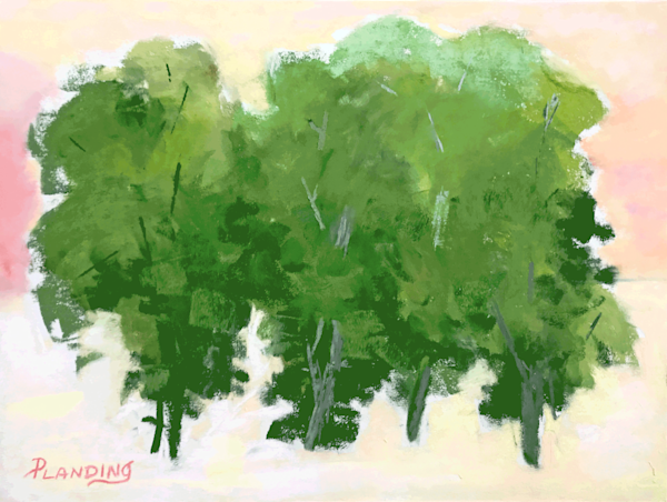 An original pastel painting study of a grove of deciduous trees in high summer.