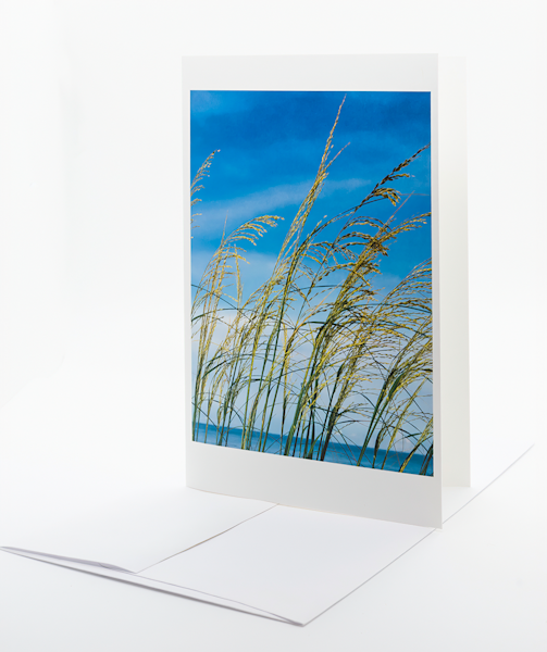 Sea Oats   Note Card | Robert Vielee Photography