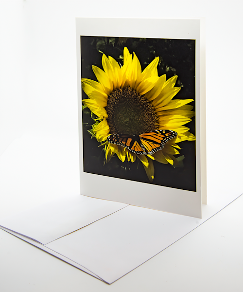 Sunflower And Butterfly   Note Card | Robert Vielee Photography