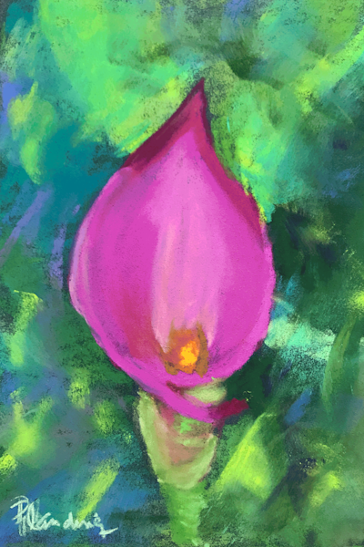 Calla Lily Speaks   Soft Pastel by Mary Planding