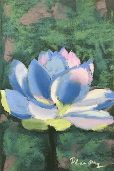 Lotus en Bleu | Mary Planding