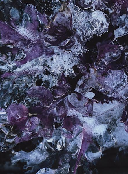 Jen's Frozen Cabbage Art | RPAC Gallery