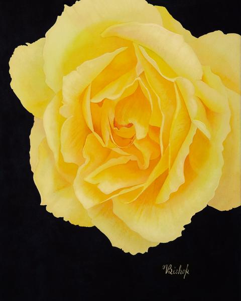 Yellow Tune Art | victoriabishop.art