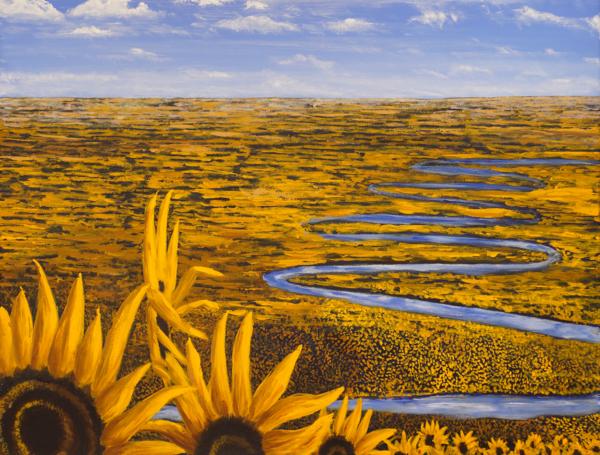 Winding River Thru Sunflowers Print